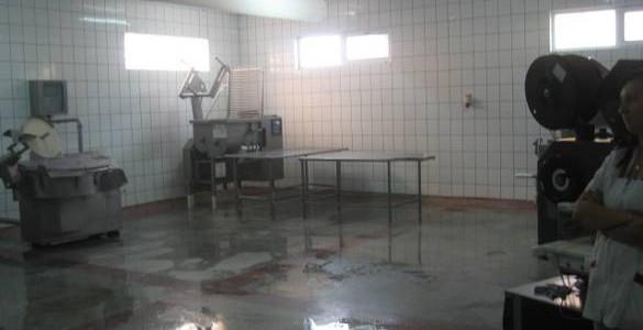 Fabrica procesare carne de vanzare